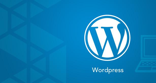 8 Benefits of using the WordPress Platform to build your website.